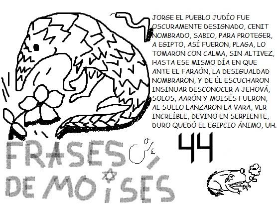 FRASESDEMOISES44