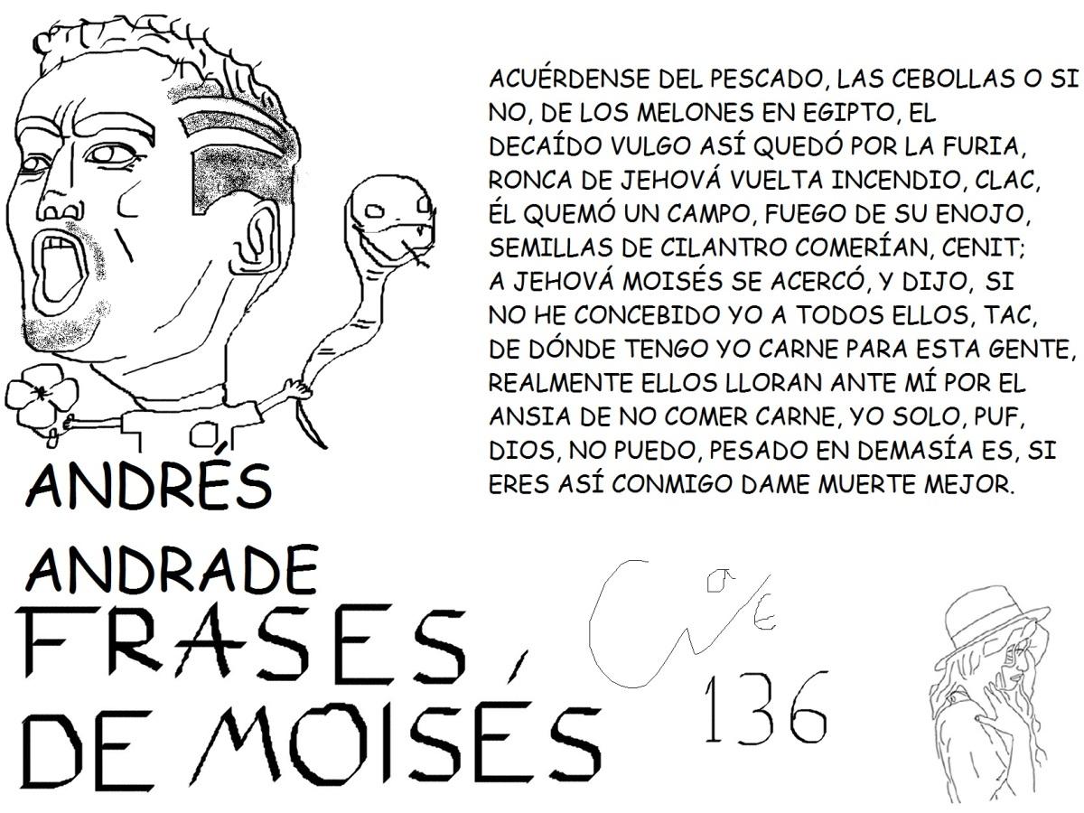 FRASESDEMOISES0136